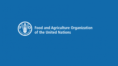 Photo of Monitoring, Evaluation and Communications Expert (FAO)